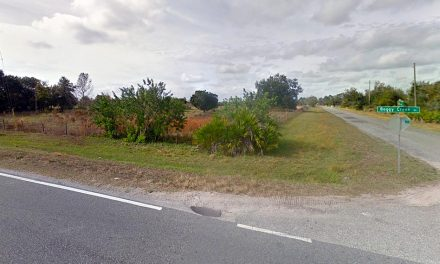 Body Found Along Rural Road in Kissimmee Near Boggy Creek Road