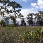 Drenching Rains Throughout Osceola County Bring an End to the Burn Ban