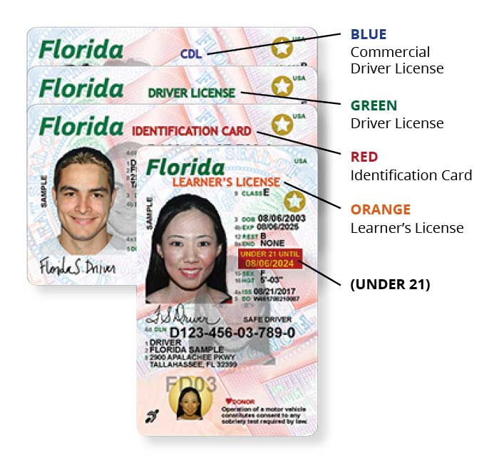 State of florida 39 s new driver license and id card for Florida lifetime fishing license