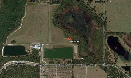 Free Hurricane Debris Drop-Off Site for Osceola County Residents