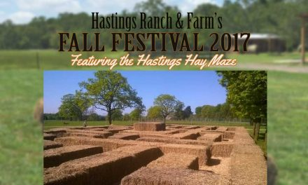Hastings Ranch & Farm Fall Festival Announces Its Amazing Hay Maze