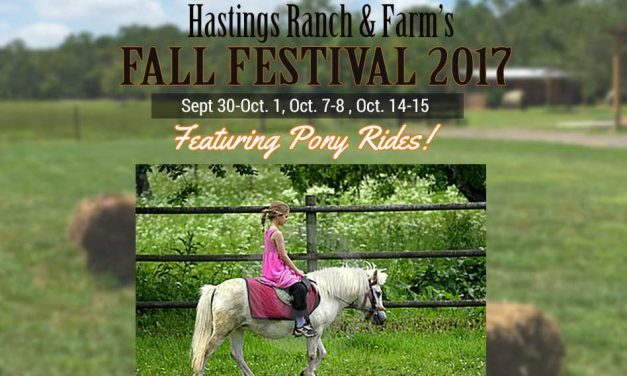 Hastings Ranch & Farm Fall Festival Adds Pony Rides to Its 3 Weekend Event!