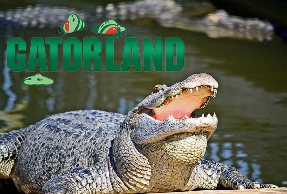 Gatorland Reopens Today, Sept. 13 After Hurricane Irma Brought Power Outages