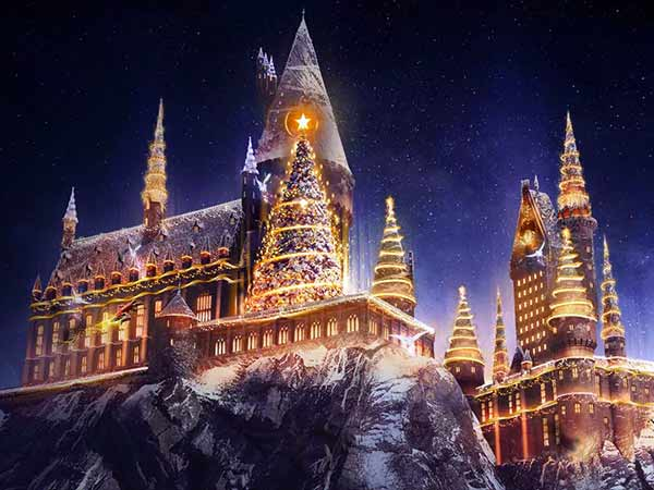 Harry Potter Wizarding World Christmas
