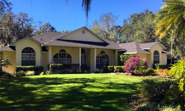 Run… Don't Walk to See this Beautiful Kissimmee Home!