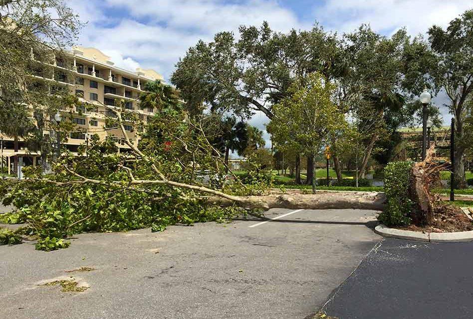 Osceola County Hurricane Irma Aftermath Information Update
