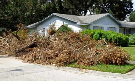 Osceola County Citizen Debris Drop-Off Sites to Close After Sunday
