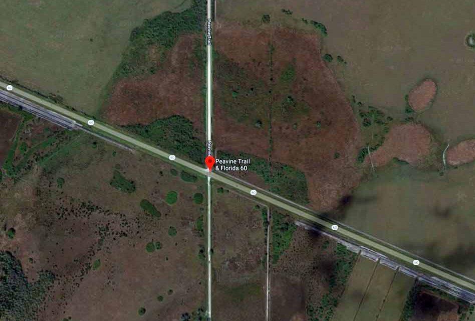 One Dead, Four Injured in Multi-car Crash in Osceola County