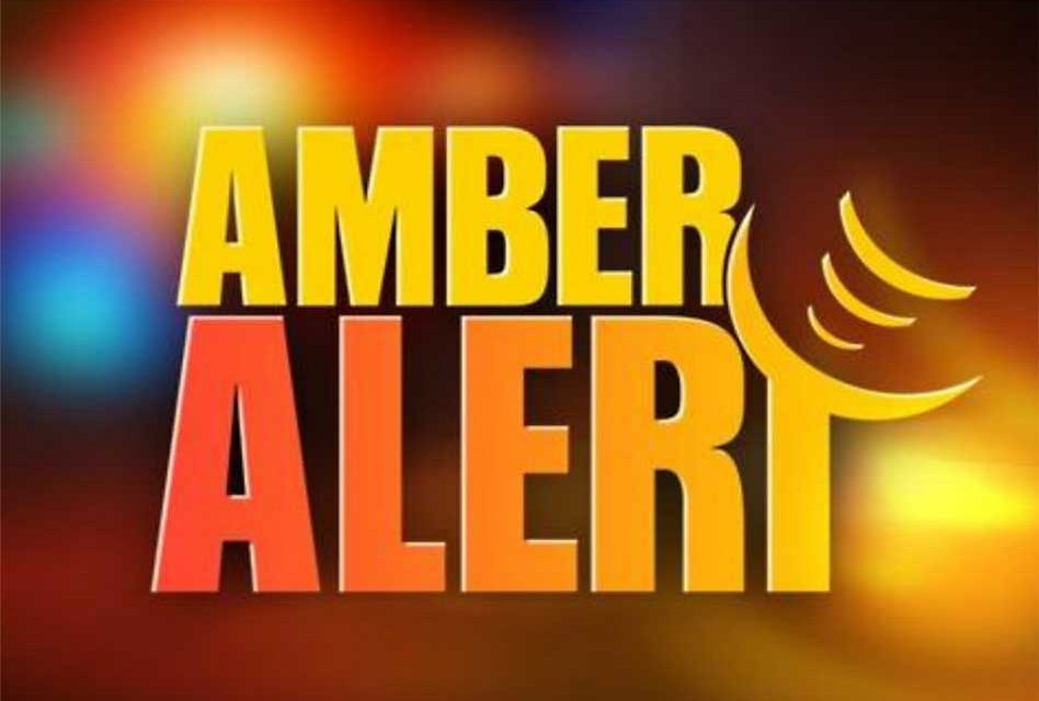 Amber Alert Issued for Titusville Girl Seen Being Forced Into an SUV, Officials Say