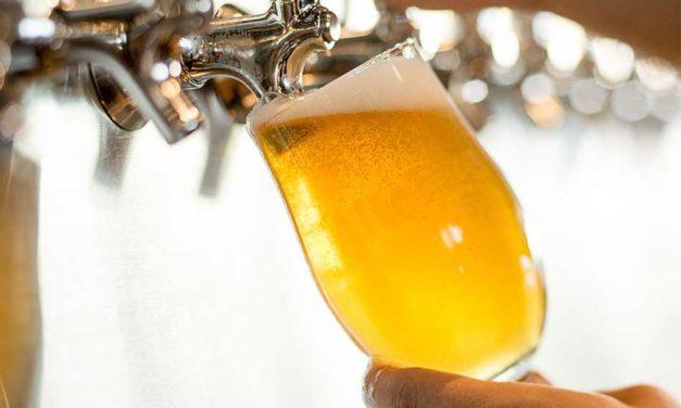 SeaWorld Orlando Giving Away Free Beer This Summer