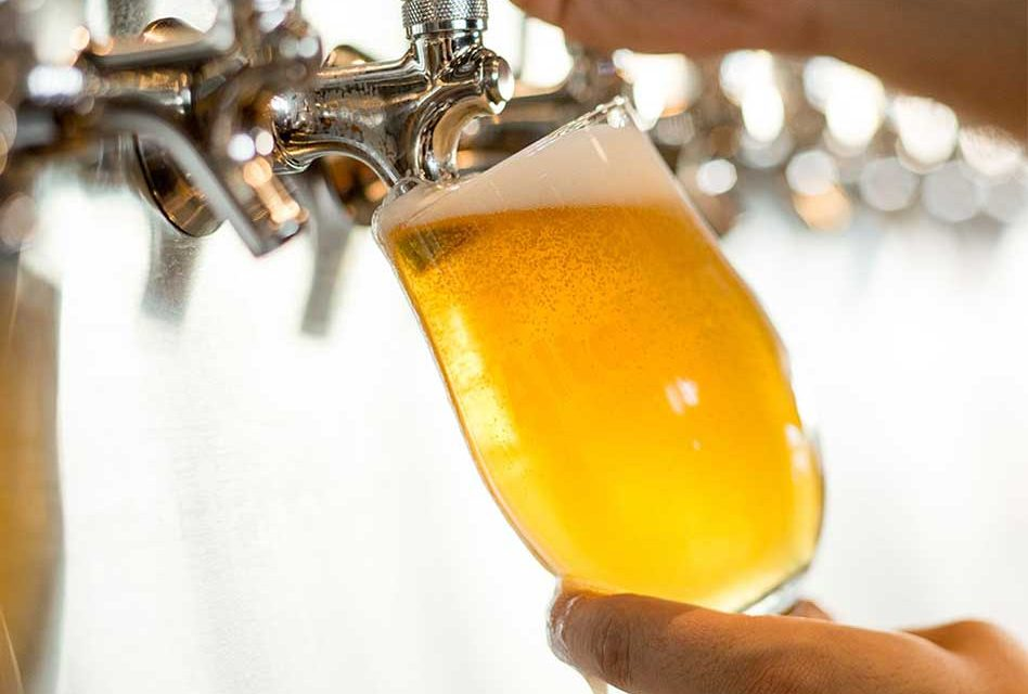 SeaWorld Orlando Giving Away Free Beer This Summer