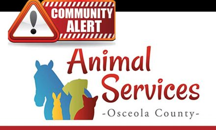 St. Cloud Dog Attack Causes Osceola County Animal Services To Seek Community's Help