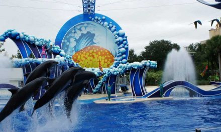 SeaWorld Removes Single-use Plastic Straws and Bags From Its Theme Parks
