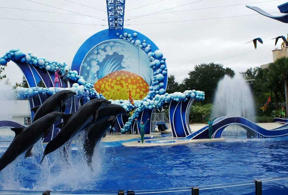 SeaWorld CEO: We are hoping to reopen in June