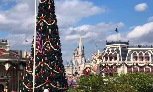 Magic Kingdom Currently at Full Capacity, Universal and SeaWorld Not Far Behind