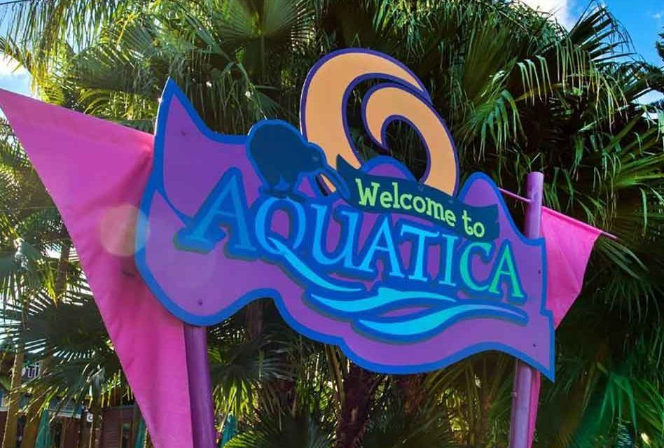 Seaworld's Aquatica Becomes First Water Park to Be a Certified Autism Center