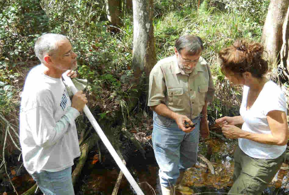 FWC Seeks Information To Assist Private Landowners in Florida