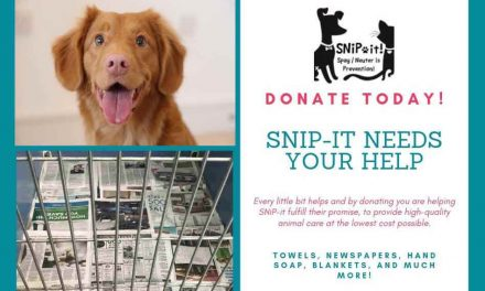 Help SNiP-it in Kissimmee Keep Spay and Neuter Costs Low By Donating