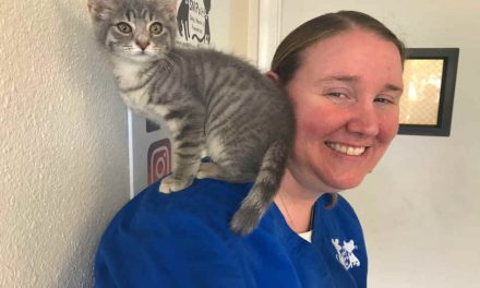 SNiP-it Offers $25 Spay and Neuter Special Thanks to Funding from Florida Animal Friend