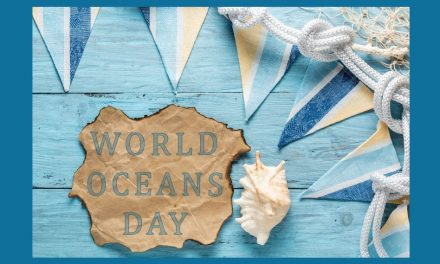 Help Protect, Celebrate, and Conserve The Ocean on World Oceans Day