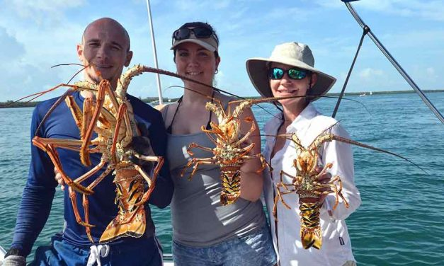 Spiny Lobster Season Starts Soon in Florida, Get Your Masks, Fins and Dive Flags Ready!
