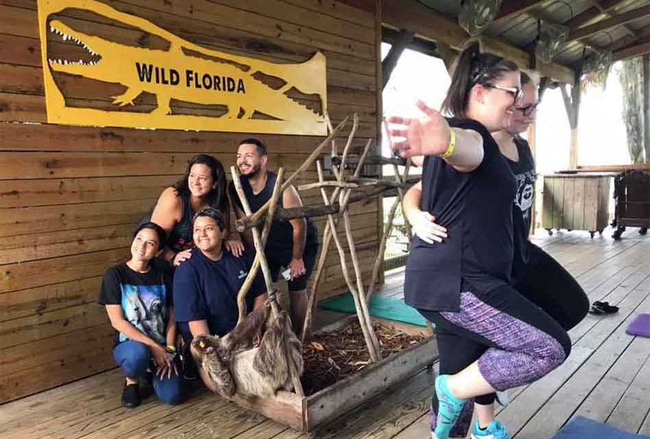 "Wild Florida and ""Guy the Sloth"" Hold the ""Slowest"" Yoga Class Ever!"
