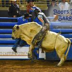 The Fall Rodeo Season is Almost Upon us at the Silver Spurs Arena… It's Boots, Bulls and Barrels!