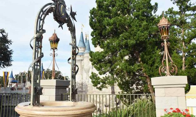 Disney World Turns Guests' Wishing Coins Into Foster Care Teens Support in Central Florida