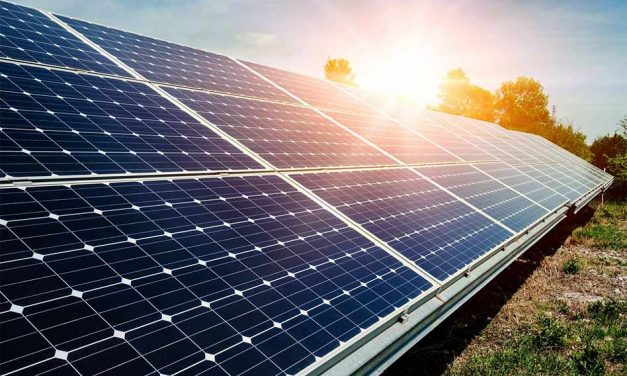 Join KUA in Soaking Up the Sun with Community Solar!
