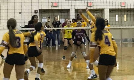 Take a Look at the Osceola School District's Girls Volleyball Teams!
