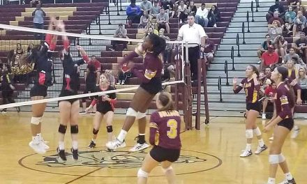 "St. Cloud Bulldogs bring the ""Boom"" with big volleyball win; regional finals next week"