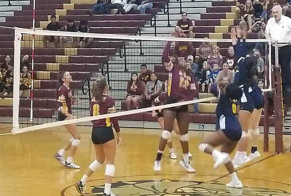 St. Cloud Bulldogs dominant in regional volleyball playoff victory