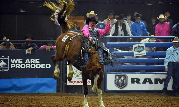 RAM National Circuit Finals Rodeo action returns to Kissimmee next week, Cattle drive hits Broadway Monday
