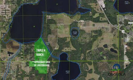 500 acres of Osceola citrus groves near Alligator Lake sold for $12M