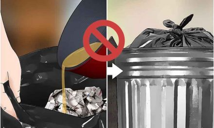 Grease, cooking oil, hazardous waste or materials, and garbage don't mix, but there are solutions in Osceola County