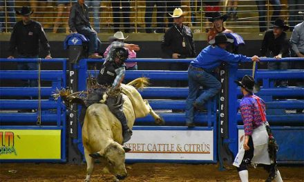 Monster Bulls kicks off busy local rodeo season Feb. 15 at Osceola Heritage Park's Silver Spurs Arena in Kissimmee