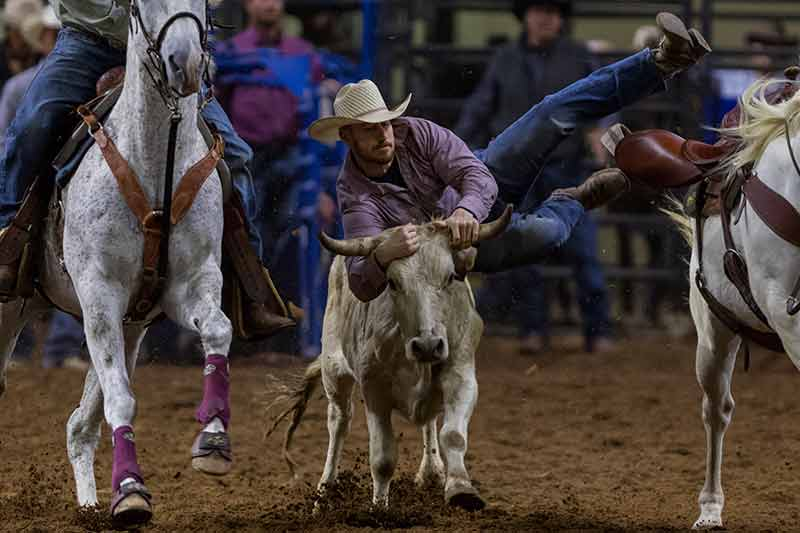 Silver Spurs Rodeo to Celebrate Over 77 Years of Rodeo Action and Heritage October 1-2