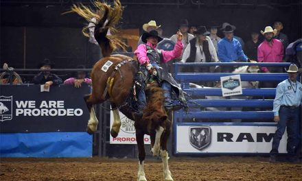 Only days away from RAM National Circuit Finals Rodeo in Kissimmee!