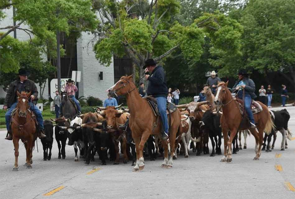 RAM Rodeo cattle drive returns to downtown Kissimmee's Broadway March 30