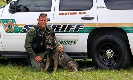 Vested Interest in K9s provides 4 Osceola Sheriff's Office dogs new protective vests