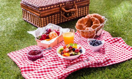 Today is April 23rd — it's National Picnic Day!