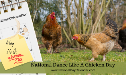 Shake your tailfeather — May 14th is National Dance Like a Chicken Day!