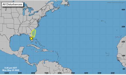 Tropically depressed: NHC monitoring the wave bringing us wet weather