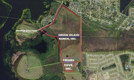 Osceola County adds 174 acres of land for conservation just east of Brownie Wise Park