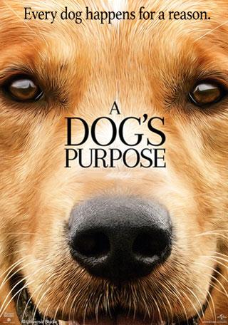 Gog's Purpose Movie