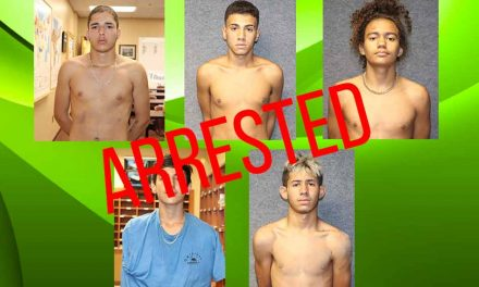Teenagers arrested in connection with a series of armed robberies, aggravated assaults in Osceola