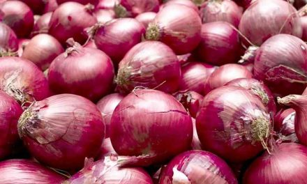 Red Onions linked to Salmonella outbreak nationally, including Florida, FDA says