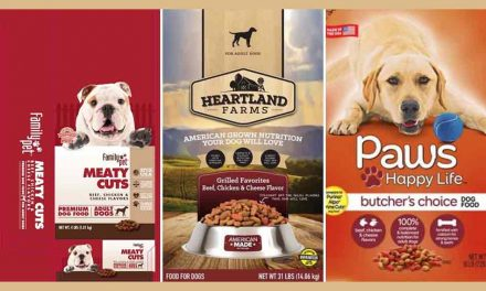 Three kinds of dog food sold at Family Dollar nationally recalled