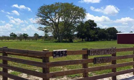 City of St. Cloud Council votes 3-2 to purchase 219 acre Hastings Ranch