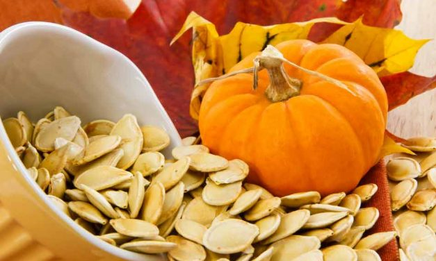 It's October 7th, and that means it's National Pumpkin Seed Day!